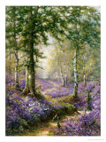 The Bluebell Wood Giclee Print by Alfred Fontville de Breanski