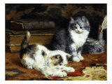 Kittens at Play Giclee Print by Charles Van Den Eycken