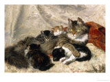 Taking a Cat Nap Giclee Print by Henriette Ronner-Knip