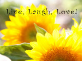 Live Laugh Love: Sunflower Print by Nicole Katano