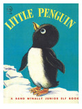 Little Penguin Photographic Print