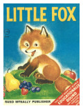 Little Fox Photographic Print