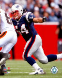 Tedy Bruschi Photo
