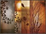 Autumnal Equinox Framed Canvas Print by Edward Aparicio