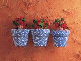 Mediterranean Pots Poster by Anne Geddes