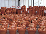 123 Pots Posters by Anne Geddes