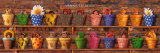 Potting Shed Babies Posters par Anne Geddes