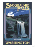 Snoqualmie Falls by Night, Washington Arte