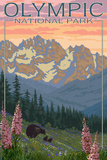 Spring Flowers, Olympic National Park Giclée-Premiumdruck von  Lantern Press