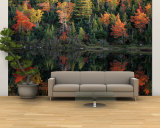 Autumn Foliage Reflected in a Canadian Lake Wall Mural  Large by Raymond Gehman