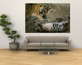Two Tigers Play Together at the National Zoo Wall Mural by Vlad Kharitonov