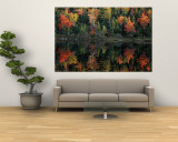 Autumn Foliage Reflected in a Canadian Lake Wall Mural by Raymond Gehman