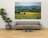Field of Sunflowers Wall Mural by Richard Nowitz
