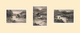 The Elusive Salmon Triptych Premium Giclee Print by Douglas Adams