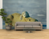 A Polar Bear Cub Rests Comfortably Atop the Back of His Mother Wall Mural – Large by Norbert Rosing