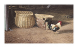 Cockerel And Baskets Premium Giclee Print by Peter Munro