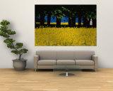 Spectacular Fields of Yellow Wildflowers Vægplakat af Sisse Brimberg