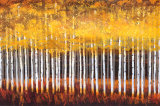 Golden Aspens Stretched Canvas Mount by Robert Holman