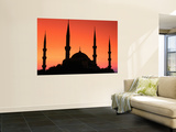 Dome and Minarets of Blue Mosque, Sultan Ahmet Camii, Istanbul, Turkey Wall Mural by John Elk III