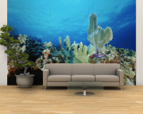 Underwater View of a Reef in the British Virgin Islands Wall Mural – Large by Raul Touzon