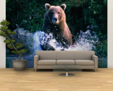 Grizzly Bear Running in Kinak Bay, Katmai National Park, U.S.A. Wall Mural – Large by Mark Newman
