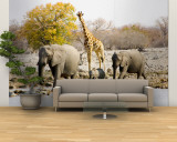 African Elephants and Giraffe at Watering Hole, Namibia Wall Mural – Large by Joe Restuccia III