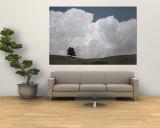 A Lone Ponderosa Pine Tree under a Cloud-Filled Sky Vægplakat af Annie Griffiths