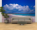Pink Sand Beach, Harbour Island, Bahamas Wall Mural – Large by Greg Johnston