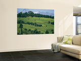 Tea Plantations Covering the Hills Near Mount Kenya Wall Mural by Michael S. Lewis