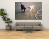 Two Retriever Pups Walk in the Surf at a Beach Wall Mural by Bill Curtsinger