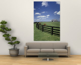 Thoroughbred in the Countryside, Kentucky, USA Wall Mural by Michele Molinari