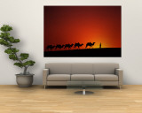 Camel Caravan at Sunrise, Silk Road, China Reproduction murale géante par Keren Su