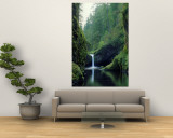 Punch Bowl Falls, Eagle Creek, Columbia River Gorge Scenic Area, Oregon, USA Wall Mural by Janis Miglavs