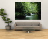 A Woodland Stream Winding Through a Burmese Jungle Wall Mural by Steve Winter