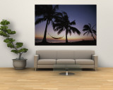 Twilight View of Beach with Hammock and Palms, Costa Rica Mural por Michael Melford