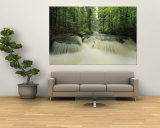 Waterfall Time Exposure, Bayerischer Wald National Park, Germany Mural por Norbert Rosing