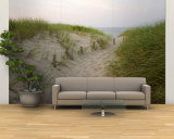 Path at Head of the Meadow Beach, Cape Cod National Seashore, Massachusetts, USA Wall Mural – Large by Jerry & Marcy Monkman