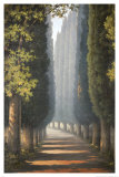 Through the Trees Art by Yip Kim