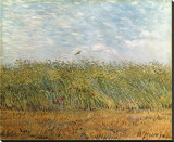 Wheat Field with a Lark Stretched Canvas Print by Vincent van Gogh