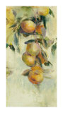 Golden Fruit Study I Limited Edition by Allyson Krowitz