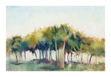 Coconut Grove Limited Edition by Allyson Krowitz