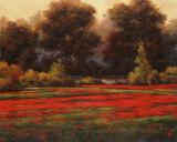 Poppy Meadows II Kunstdrucke von T. C. Chiu