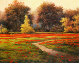 Poppy Meadows I Prints by T. C. Chiu