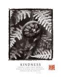 Kindness: Fiddlehead Poster