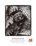Kindness: Fiddlehead Print