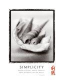Simplicity: Shells Art