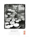 Beauty: Lilypads Prints