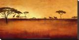 Serengeti I Stretched Canvas Print by Tandi Venter