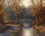 Path to Stone Bridge Kunstdrucke von T. C. Chiu