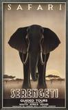 Serengeti Posters by Steve Forney